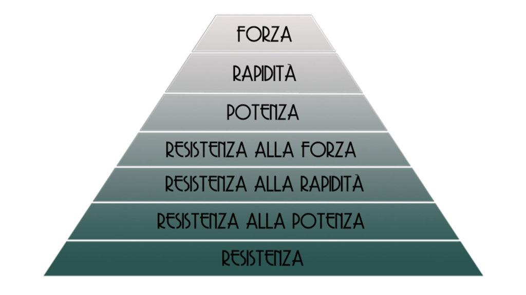 Piramide capacità organico muscolari